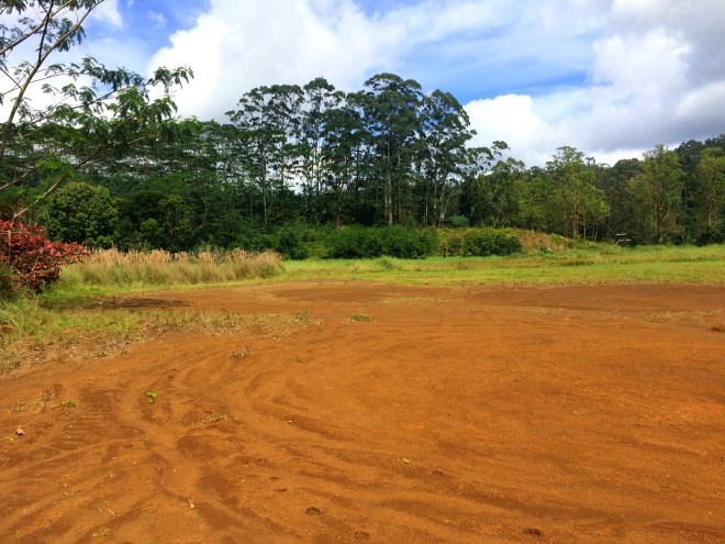 red sand arboretum.jpg